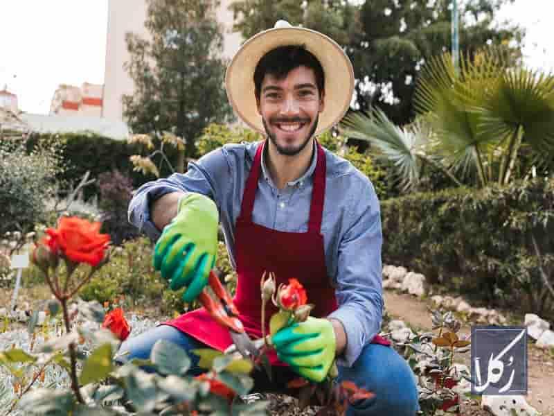 نمونه قرارداد اجاره باغ میوه