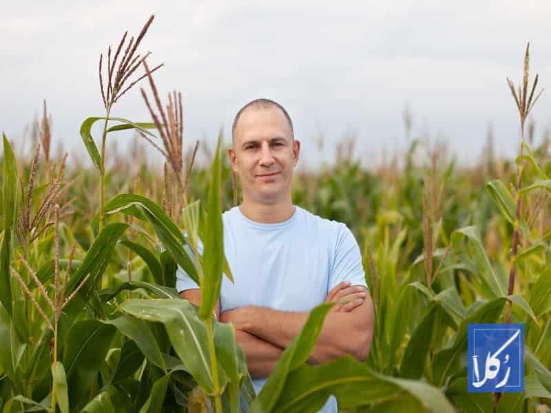 قرارداد مشارکت کشاورزی