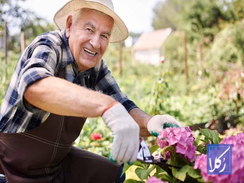 قرارداد باغبانی