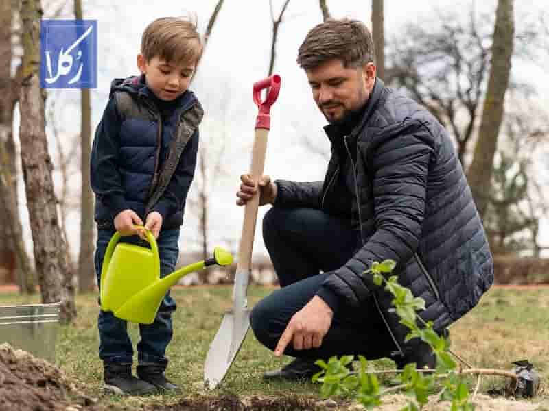 قرارداد احداث فضای سبز